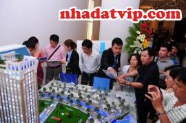 Tư vấn về việc Việt kiều mua nhà ở Việt Nam giao dịch như thế nào, Chuyển nhượng quyền sử dụng đất cho người thân tại VN, ở Việt Nam Việt kiều có được sở hữu nhà ở riêng lẻ