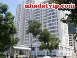 Tư vấn Việt kiều có được phép bán đất thừa kế, Việt Kiều sở hữu nhà tại Việt Nam có được thế chấp, Xuất cảnh có phải bán nhà
