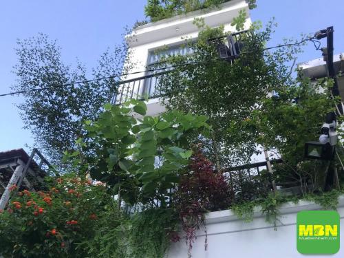 Giá nhà cho thuê giảm chưa từng có, 394, Huyền Nguyễn, NhaDatVip.Com, 26/06/2021 13:06:41